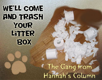 Trashed human litter box